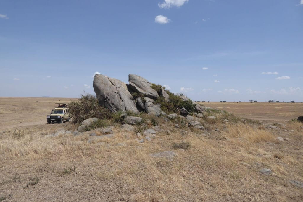 Serengeti Kopjes, Serengeti Plains