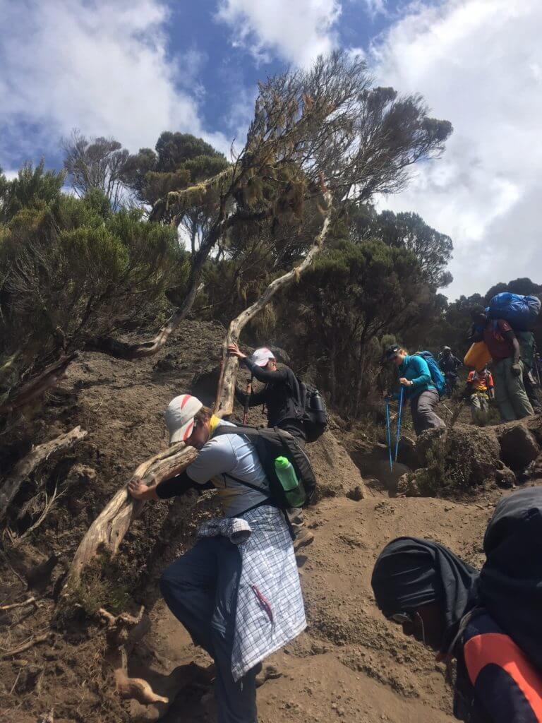 Karanga Valley, Kilimanjaro day 3 scramble