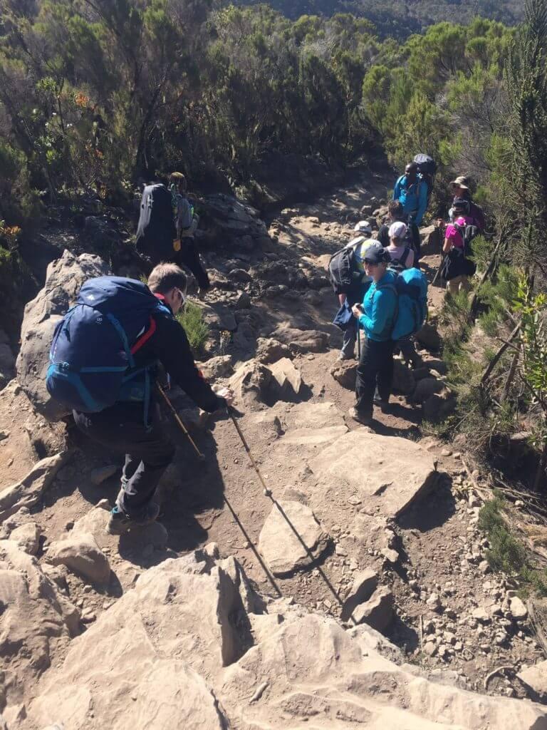 Mweka Trail, descending Kilimanjaro
